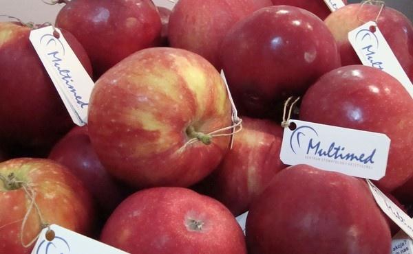 multimed-_akcja_jedz_jablka-3